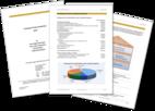 Bild des Angebots Privat-Bilanz und Depotanalyse