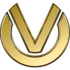 Logo der Finanz- & Vermögensberatung - Vitali Moor & Team von  Vitali Moor