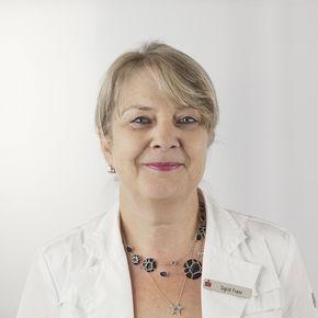 Profilbild von  Sigrid Franz